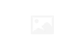 Jewelry box tree of life in cream or black